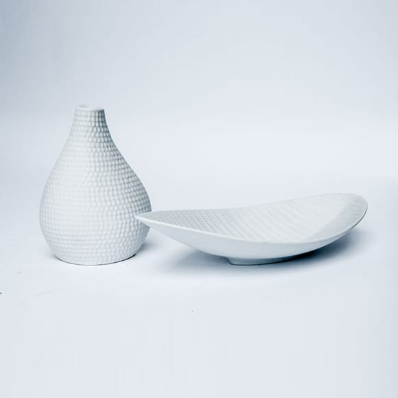 Vase and Bowl, Reptile